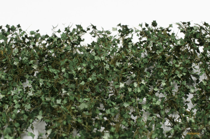MiniNatur 936-22 vs The Army Painter Poison Ivy BF4128 closeup